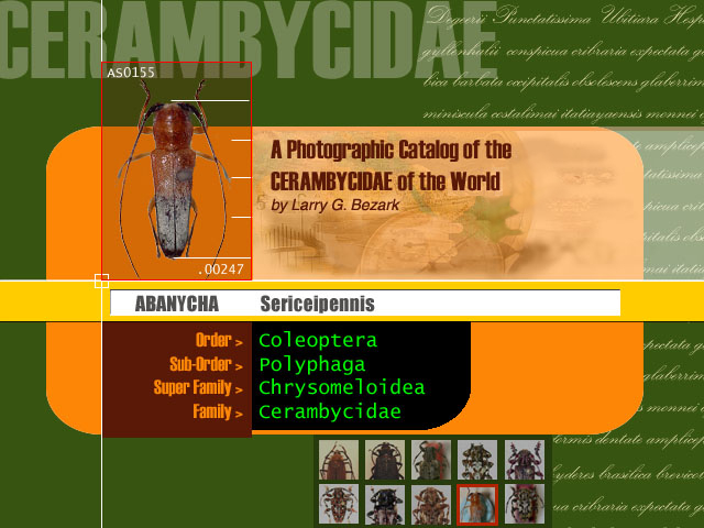 A Photographic Catalogue of the CERAMBYCIDAE of the New World